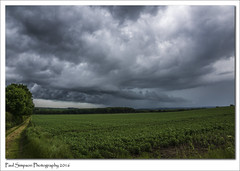 Stormy Weather (Paul Simpson Photography) Tags: summer sky cloud storm nature rain weather cloudy farmland lincolnshire fields crops raining naturalworld stormyweather summerstorm stormchase photosof imageof photoof imagesof sonya77 paulsimpsonphotography june2016
