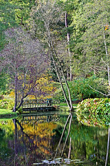Upon Reflection (mike.read44) Tags: bridge trees lake green castle home nature water yellow canon reflections garden purple serene stately cholmondeley
