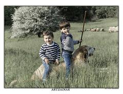 Los pastores (Jabi Artaraz) Tags: jabiartaraz jartaraz zb euskoflickr pastores niños ovejas rebaño natura nature inaxio kosme haurrak