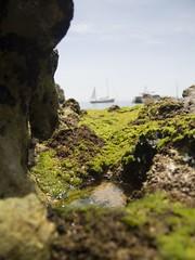 Macro Rocky Surface with Moss (esseffdeearr) Tags: portugal algarve olhos dagua riu guarana praia da falesia albufeira portimao vacation