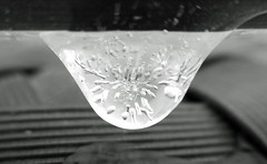 Frozen raindrop (Monceau) Tags: blackandwhite cold ice monochrome frozen bokeh interior depthoffield sparkling raindrop hotorcold