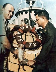 1959: The USS Kiowa recovers Able & Baker, the first US animals to go into space and return alive. [350x450] #HistoryPorn #history #retro http://ift.tt/25qyMXx (Histolines) Tags: history animals us baker space go first retro return timeline alive uss 1959 able the kiowa vinatage recovers historyporn histolines 350x450 httpifttt25qymxx