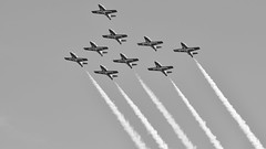 The Canadian Forces Snowbirds (431 Air Demonstration Squadron) Washington DC Flyover on May 24, 2016 (J Sonder) Tags: canada arlington virginia us unitedstates dcist flyover canadianforces popville cfsnowbirds famousdc exposeddc dcfocused greatergreaterwashingto