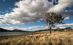 Lake Moogerah (Lamuel Chung) Tags: park travel plants cloud mountain lake nature landscape countryside still nikon wind country ngc australia brisbane tokina national shore queensland land aussie nikkor cloudscape geographic 1224 exceptional moogerah d7100 analagous