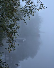 (GBrosseau) Tags: blue mist lake reflection nature fog landscape quebec wharf monttremblant barebranches lacsuperieur