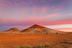 Peculiar Knob (Trace Connolly) Tags: pink red sky nature sunrise canon landscape desert australian australia outback serene southaustralia breakaways cooberpedy naturephotography sigma1020mm stuartrange australiasouthaustralia environmentalphotography thebreakaways canon7d cloudsstormssunsetssunrises peculiarknob thebreakawayrange
