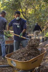 Macerich Park Work Day - 11/12/16 (TreePeople) Tags: park work painting table day canyon trail maintenance mulch coldwater treepeople macerich