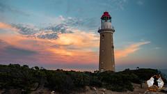 20160414-2ADU-039 Kangaroo Island