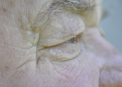 Time flies... (aliademant) Tags: old man macro grey nikon time d flies wrinkles 90 macromondays