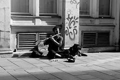 Music is life. (Marilyn L.D. - Through My Lens) Tags: street blackandwhite musician music dog monochrome photography artist outdoor sarajevo streetphotography musical streetperformer mansbestfriend musicalinstrument walkingstreet bosniaandherzegovina dayphotography