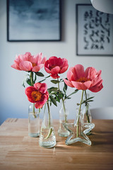 It's all about Flowers. (www.juliadavilalampe.com) Tags: vienna pink blue light flores home table austria sterreich europe bottles decoration simple peonies frascos decoracin peonias