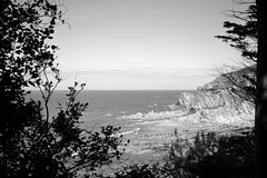 A view over the Lee beach (Sazzaheaton) Tags: sea plants white black tree nature contrast point town horizon lee viewpoint sparkling woolacombe headland jutting plabts leandmark