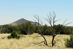 View off of the Loop Road (criggle1) Tags: arizona parks lanscapes
