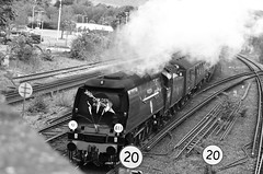 34067 (John A King) Tags: golden steam arrow sevenoaks statesman tangmere 34067