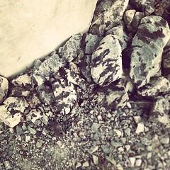 zebra rocks #geilo #norway (milov) Tags: phonecam square cropped tweetme fbme instagram samsunggalaxys3
