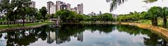 Lago das Rosas. (joo Candido1967) Tags: park parque brazil lake nature brasil canon natureza goinia gois sx30 canonsx30is lagodasrosas sx30is vigilantphotographersunite vpu2 vpu3 vpu4 vpu5 vpu6 vpu7 vpu8 vpu9 vpu10 lakeoftheroses