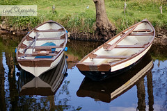 """It's a great event to get outside and enjoy nature."" (★☆Gigi☆★) Tags: ireland vacation lake reflection nature water rural forest canon countryside boat pond scenery outdoor peaceful tranquility kerry killarney boating recreation ef50mmf18ii killarneynationalpark enviroment 500d éire t1i"