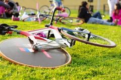 Bici-color (EileenZitaClara) Tags: bike bicicleta estadio fixed fixie nacional trackstand velodromo piñónfijo fixedlife velodromourbano