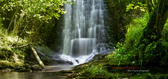 Parque Natural Pagoeta (Toni Duarte) Tags: longexposure trees naturaleza nature water forest agua arboles h2o bosque euskadi catarata aigua paisvasco cascada guipuzcoa largaexposición guipuzkoa toniduarte llargaexposició parquenaturaldepagoeta gettyimagesiberiaq2 ©2013toniduarte