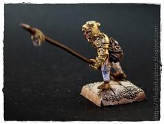 Guardia del Leopardo 1 (TheDarkPainter) Tags: warhammer mercenarios dogsofwar pikeman piquero citadelmodels miniaturascitadel
