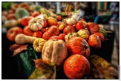 Pumpkins (Steffen Faradi) Tags: autumn food fall vegetables germany deutschland cuisine europa europe market postcard pumpkins hamburg herbst buy produce diet markt gemse krbisse kuerbis krbis postkarte einkauf kauf nahrung foodandnutrition isemarkt isestrasse