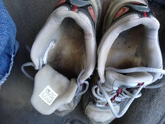 IMG_3459 (sockless_ca) Tags: shoes sneakers sweaty trail adidas smelly stinky slimy nosocks sockless insoles footbeds withoutsocks