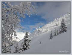 """ Chemin de vie..."" (jeanmical) Tags: winter mountain snow france nature montagne landscape"