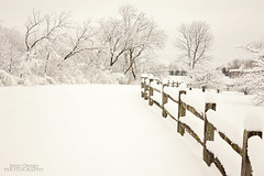 Whiteout (Jenny Onsager) Tags: white snow canon fence libertyville independencegrove photographyforrecreationeliteclub jennyonsager photographyforrecreationclassic whitewout
