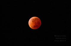 Luna Roja (Seba P. D.) Tags: red moon canon eos rebel eclipse luna bloody sangre roja t3i 600d