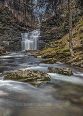 Below Big Falls, 2014.05.03 (Aaron Glenn Campbell) Tags: motion blur nature water waterfall moss spring stream pennsylvania may saturday canyon slowshutter lichen hdr 3rd nepa 2014 sullivancounty edr bigfalls 5xp sgl13 heberlyrun jamisoncity stategamelandsnumber13