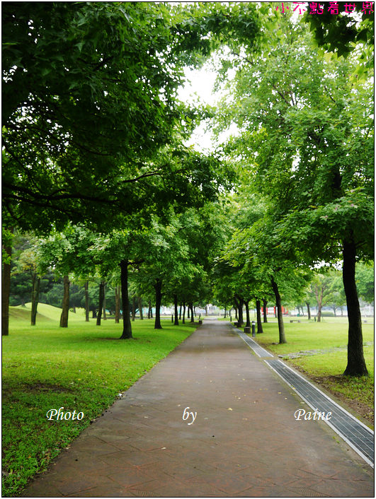 大溪埔頂公園 (28).JPG