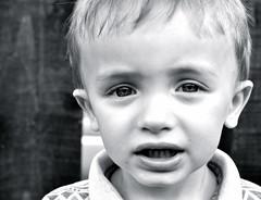 colossal insight (plot19) Tags: uk family boy portrait england west manchester kid eyes long north lance sight longs plot19