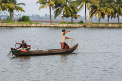 Netting (gecko47) Tags: india net fishing fishermen rice kerala canoe bananas agriculture netting coconuts longtail outboard waterways alleppey keralabackwaters tamronaf28300mmf3563xrdildasphericalif