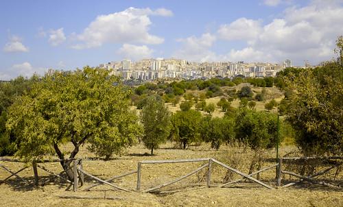 327 Agrigento depuis vallée des temples