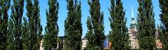 (Evelien Gerrits) Tags: blue trees tree green canon bomen groen blauw stockholm air boom gamlastan lucht luft trd bl grn tyskakyrkan gerrits canon600d canoneos600d eveliengerrits