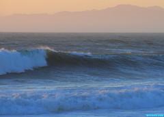 FebruaryWindSwell103 (mcshots) Tags: ocean california winter sunset sea usa texture beach nature evening coast surf waves stock windy socal mcshots southbay winds swells seas losangelescounty