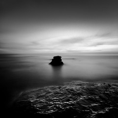 Sunset Cliffs (_johnnelson_) Tags: sandiego pinhole tmax100 zeroimage sunsetcliffs zero69