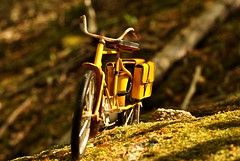 Nada es lo que parece - Nothing is what it seems (i.puebla) Tags: wood espaa naturaleza nature bike bicycle yellow 50mm miniature spain nikon bokeh bicicleta catalonia girona amarillo bosque catalua miniatura montseny airelibre d3000