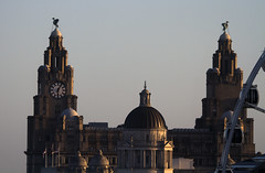 The Liver Building (Hawkeye2011) Tags: uk architecture liverpool buildings liverbuilding 2016