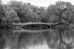 Bow Bridge _ bw (Joe Josephs: 2,650,890 views - thank you) Tags: nyc newyorkcity blackandwhite newyork landscapes centralpark photojournalism centralparknewyork urbanlandscapes blackandwhitephotography travelphotography landscapephotography cityparks urbanparks copyrightjoejosephsphotography