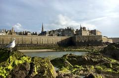 Saint-Malo, France (jrme labouyrie) Tags: mer france saint port de soleil cit nuages fortifications reflets rocher malo mouette muros couch ocan intra