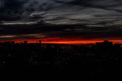 DSC03305.jpg (falafeLover) Tags: sf sanfrancisco sunlight skyline dawn rays