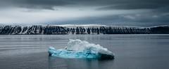 P1110661 (Craig Hemsath) Tags: snow nature norway lumix panasonic svalbard arctic micro g6 43 linblad 1235 expeditions mirrorless