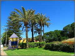 Isla Canela - Ayamonte (Huelva) (Spain) (sky_hlv) Tags: summer espaa praia beach andaluca spain holidays europa europe huelva playa resort verano andalusia atlanticocean frontera frontier ayamonte costadelaluz islacanela oceanoatlntico