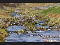 River Coquet (Paul A West (www.pwest.me)) Tags: holiday nature canon river northumbria 7d 2016 rivercoquet canon7d
