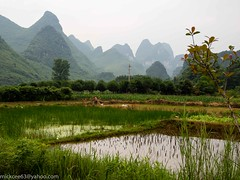160502 083 P5021069 (MickCee Holland) Tags: china mei azie 2016 maand rondreis wanneer