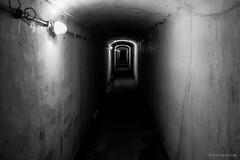 Long hall (M.N. van der Kolk) Tags: ss firstworldwar concentrationcamp secondworldwar willebroek prisoners breendonk werkkamp eerstewereldoorlog tweedewereldoorlog gevangenen fortvanbreendonk doorgangskamp nazisnazis