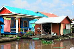 IMG_1360 maisons flottantesTonle Sap (philippedaniele) Tags: cambodge village maisonflottante flotteurs radeaux villageflottant lactonlesap