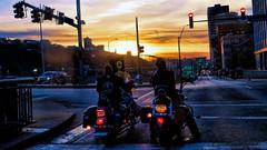 Easy Riders (Miradortigre) Tags: usa harley moto davidson riders byke motocicletas pensilvania