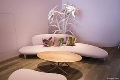 PINK SOFA! (Arthur Janin.) Tags: leica pink architecture campus deutschland design arthur am f14 28mm haus sofa 28 q vitra rhein summilux asph 116 archi cartes janin wiel typ